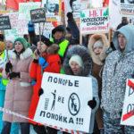 Строительство мусорного полигона в Архангельской области собираются приостановить